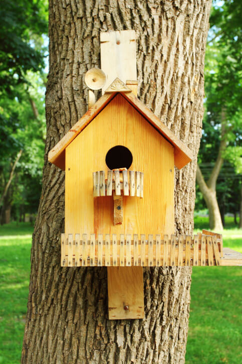 Natural wood bird house with a balcony below the access hole and picket fence at the base. This bird house is attached to a tree trunk.
