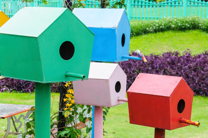 A bird house garden. A series of 5 painted bird houses on painted posts situated in a cluster.