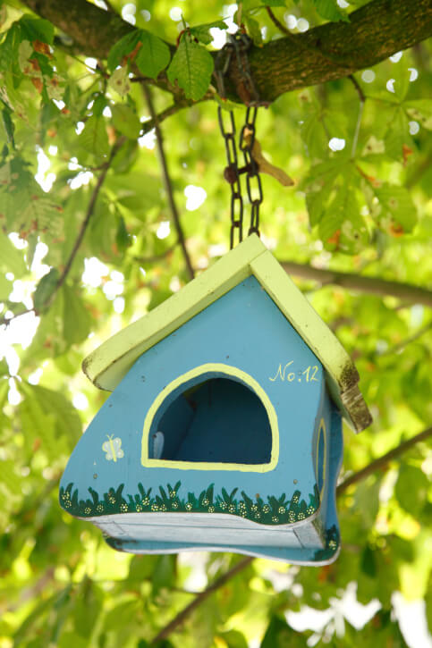 Small blue and yellow painted bird house hanging from a tree branch.