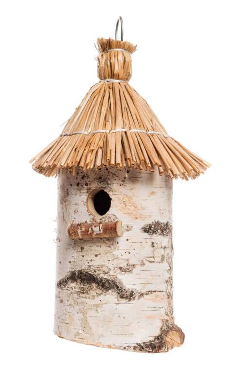 Bird house made from hollowed out birch tree branch with straw roof.