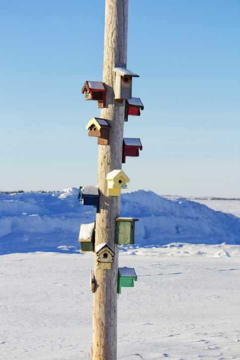 Large pole with 10 painted and colorful bird houses in the middle of a snowy landscape.