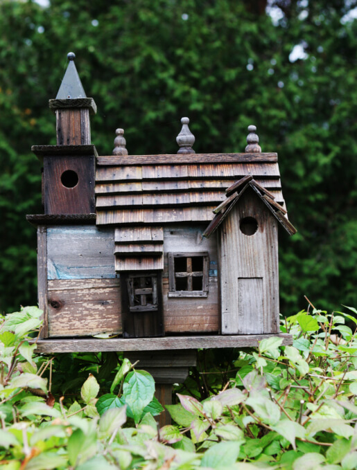 Church-style bird house with steeple propped above greenery.