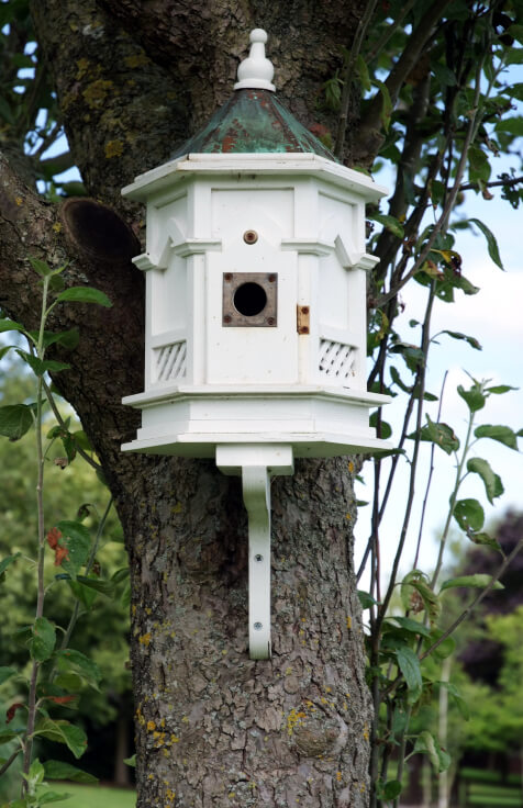 Large white painted birdhouse in a gazebo style with lattice fencing.