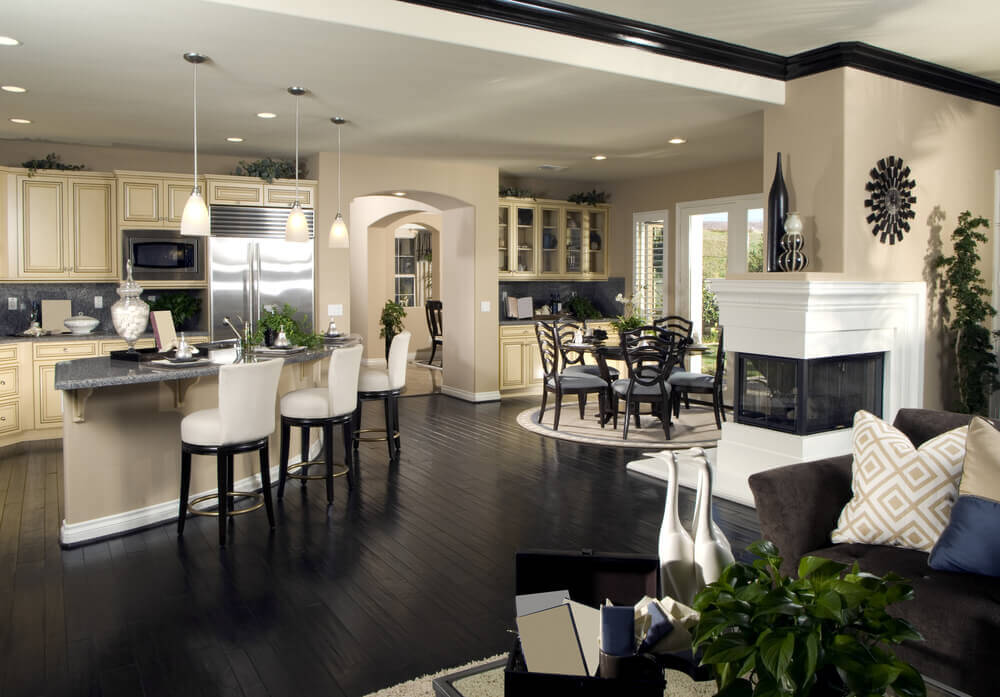 Open living area with kitchen and living room