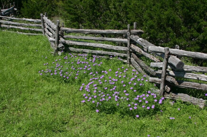 split-rail-fence1