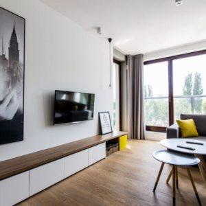Minimalist Living Room Design in Apartment