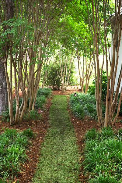 One of the beautiful grass walking paths surrounding the home, for true enjoyment of the lush jungle-like environment.
