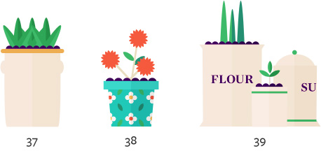 Flower planters for inside the home