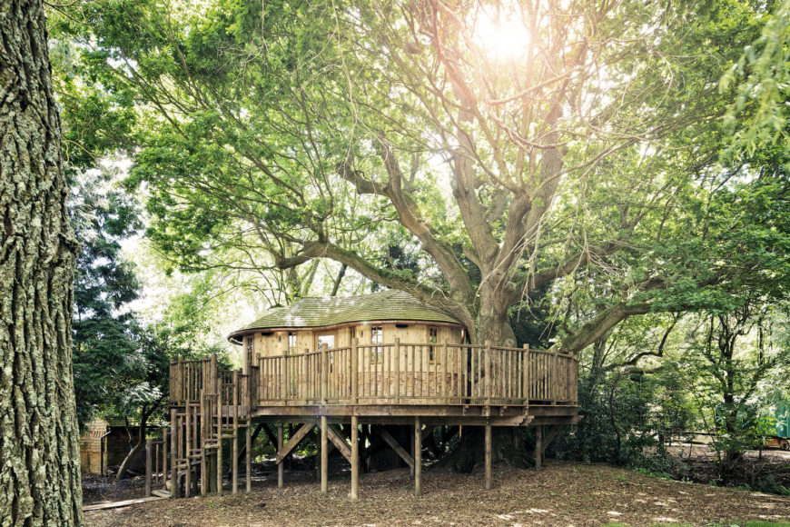 Picture of a treehouse for adults with kitchen and living room by Blueforest