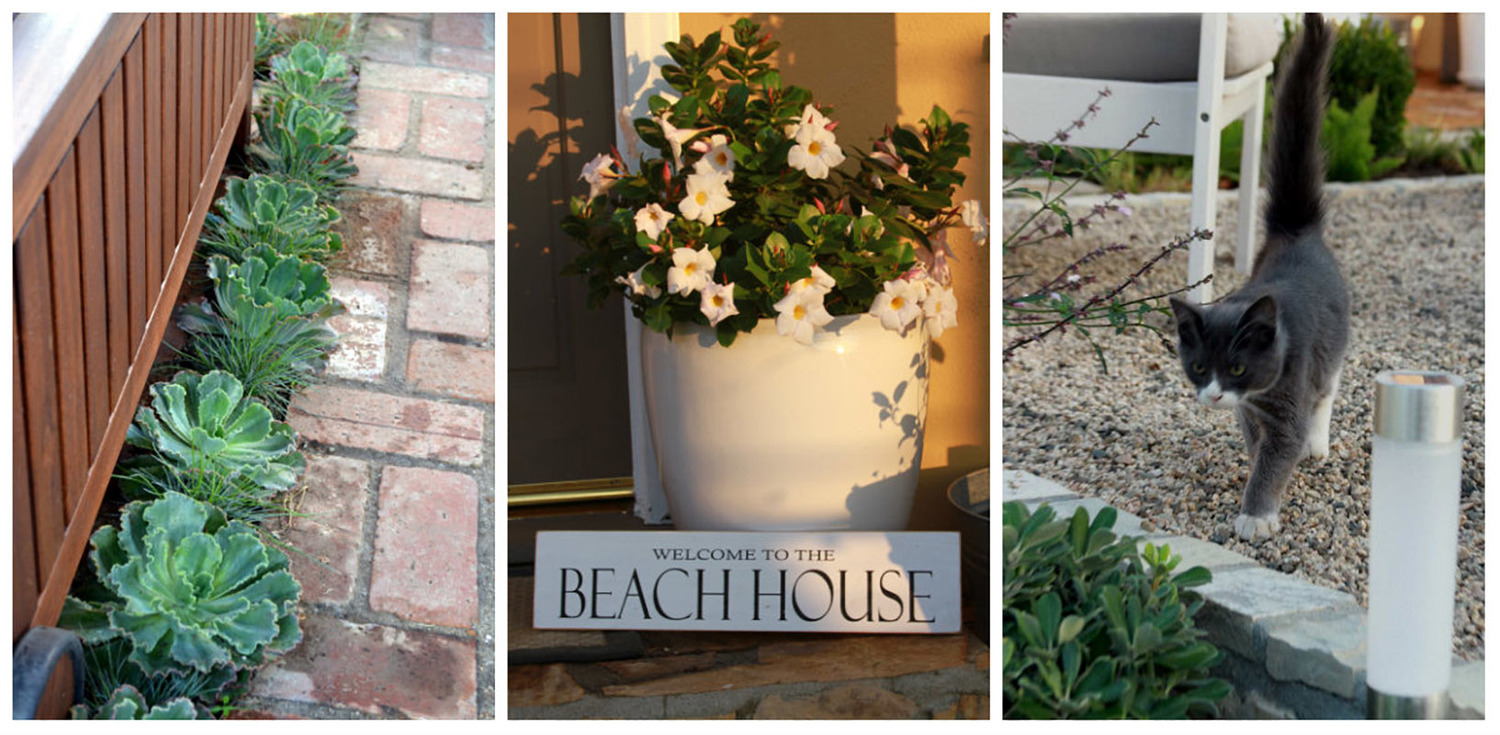 Image of: Contemporary Beach House Landscaping Designed By Living Gardens Landscape Design