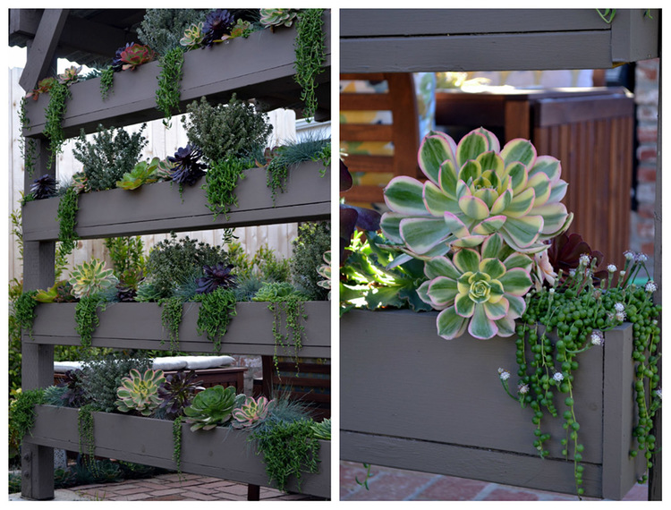A custom vertical planter filled to the brim with various succulents.