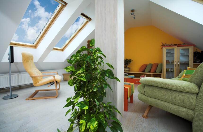 21 Attic Living Room Family Room Tv Room Ideas