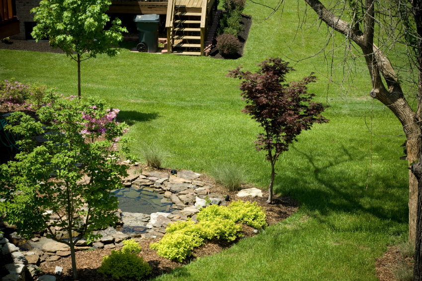 A small, shallow pond created by stacking stones. This pond is integrated into the enormous yard by a few ornamental trees, bushes, and a bed of wood chips around it.