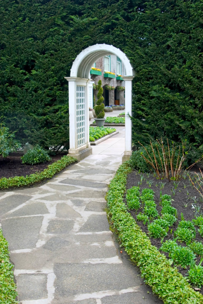 Fresh greenery is a bright contrast to the arched, white garden trellis.