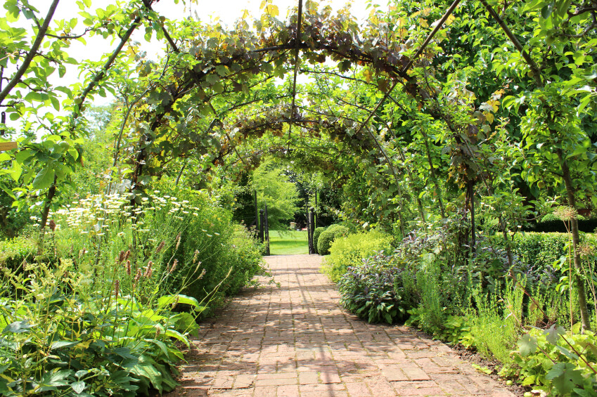 Metal hoops create an archway through this garden area. As plants thrive, the metal will be obscured and it will create a tunnel of greenery.