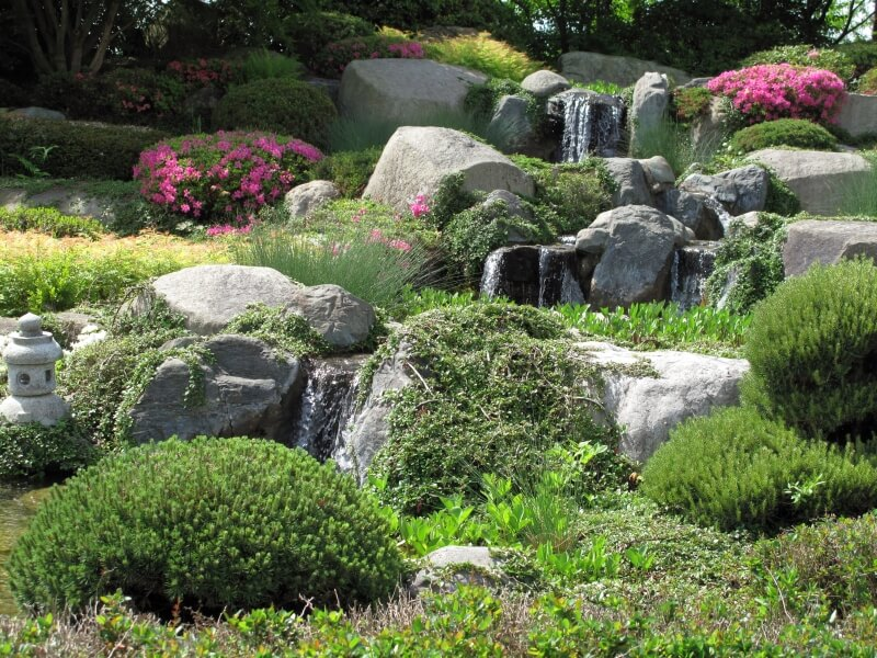 A stream with multiple waterfalls rolling through a Japanese Zen garden. Large flower bushes dot the otherwise green landscape. Vines are allowed to grow wild over the boulders.