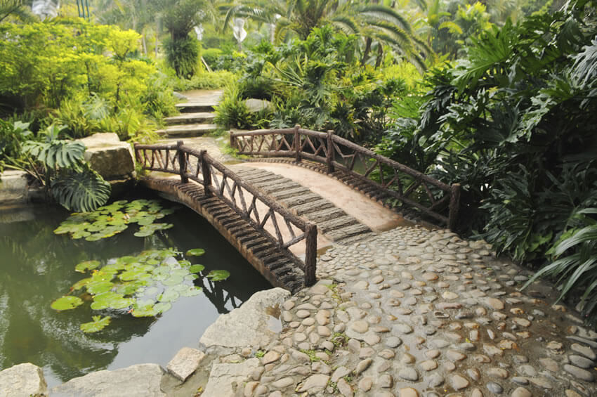 The rustic wooden railings and tire-like tracks along the bridge, in addition to the thick ferns inspire a jungle fantasy.