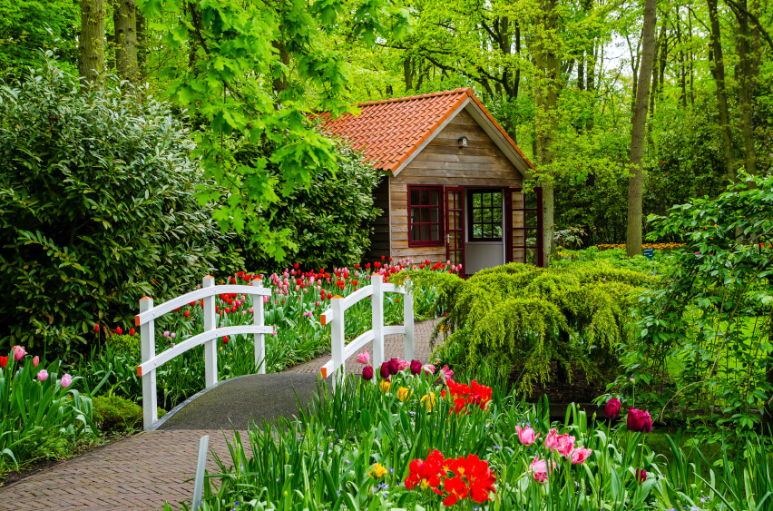 A simple fence-like bridge leads through tulips to a small cottage. The bold white with orange tips plays off the color of the tulips.