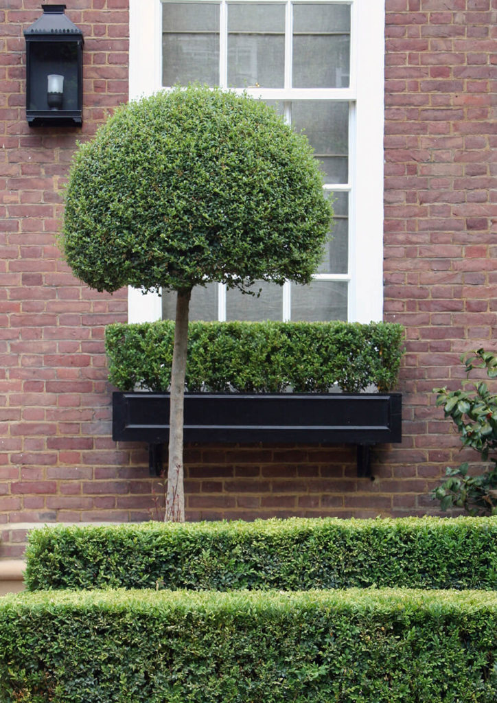 A manicured exterior with rows of hedges and a topiary tree standing in front of the black window box affixed to the brick facade. True to the style of the yard, the window box contains a manicured hedge.