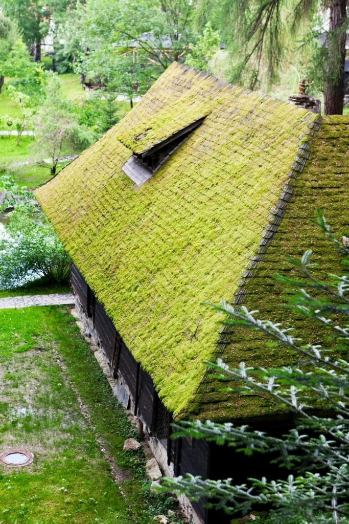 Here's a living roof of an entirely different stripe. The rustic dark wood cabin features a wood plank roof which has been covered in thick natural moss growth. This style is nearly effortless in comparison to the complex setup of standard living roofs, and makes for a truly prosaic appearance.