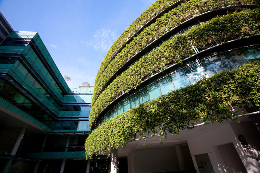 Here's another novel twist on our titular concept. Instead of the roof itself, we see the living roof practice applied to the vertical panels wrapping a modern office building. The thick greenery spills downward, bracketing the spaces between layers of full-height glazing, making for an interesting contrast with the ultra-modern design.