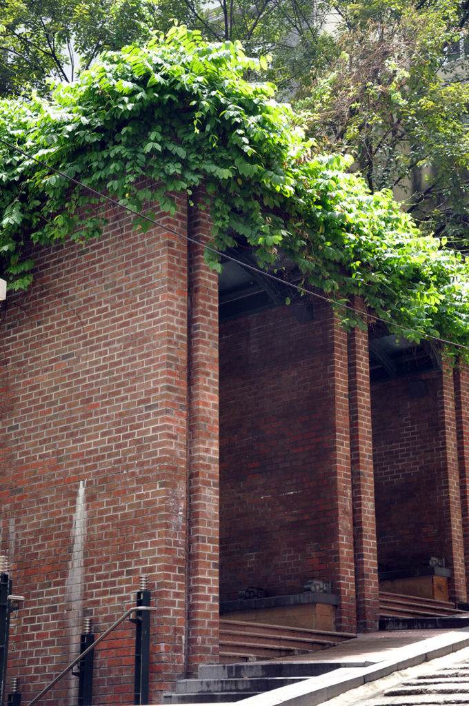 Upon this stately red brick utility structure, we see a living roof in full bloom, with leafy branches reaching outward from the roof and spilling down over the edges. This is a unique way to spice up an older building and add energy efficiency and visual appeal.
