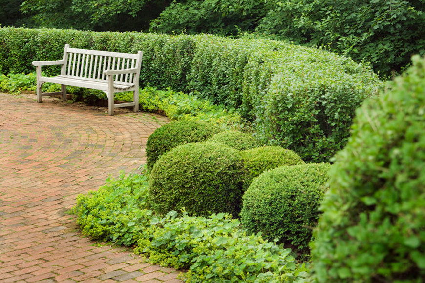 The sculptured shape of the rounded hedges in this garden complement the round brick patio the surround. Adding a loose, more natural divider around the space, the taller hedges are softer versions of the more traditional squared hedge.