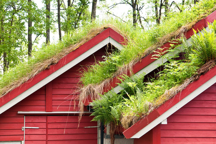 With this lush red barn style home, we return to living roofs. This one takes a layered approach, with a soil bed supporting not only grass, but ferns and other forest plant life.