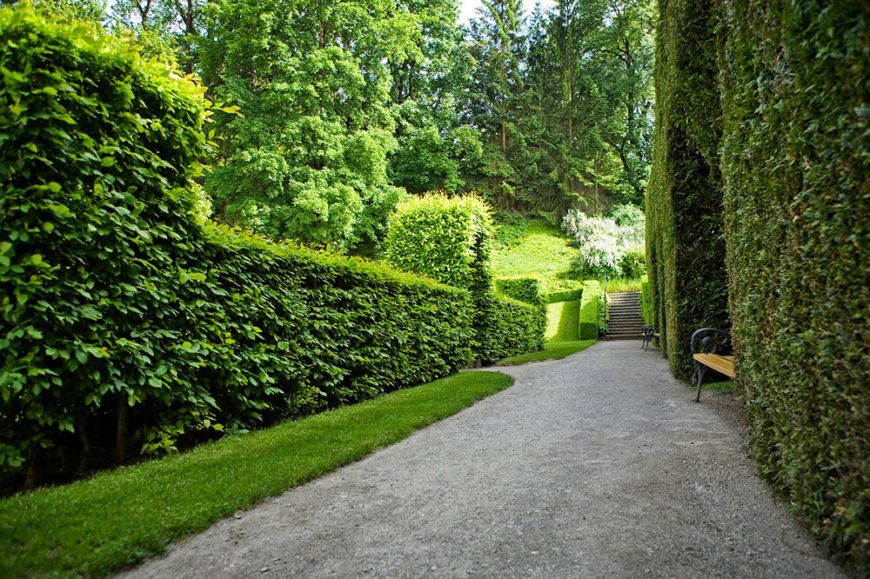 Different bushes used to create hedges can add a welcome texture change to a garden. The smooth texture of the hedges on the right contrast the loose, leafy look of the hedges on the left.