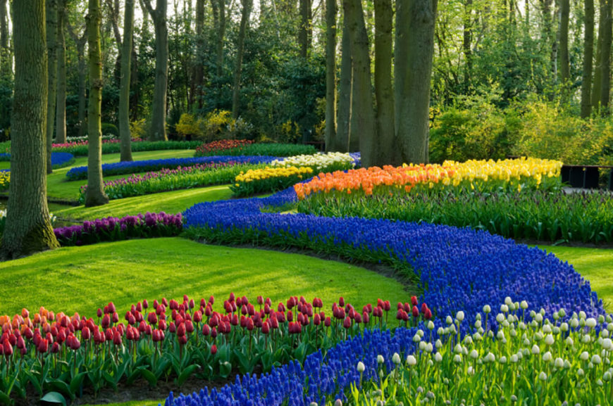 This landscape is truly stunning. Different shades of red, orange, yellow, purple and red flow seamless through the entire yard for a pop of wild color against the green grass.