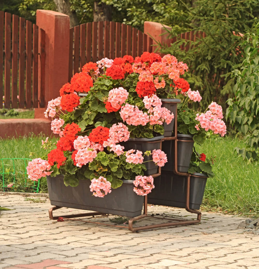 This planter stand, coupled with the lush geraniums, makes a charming flower display. It's almost like having a waterfall of flowers on your patio.