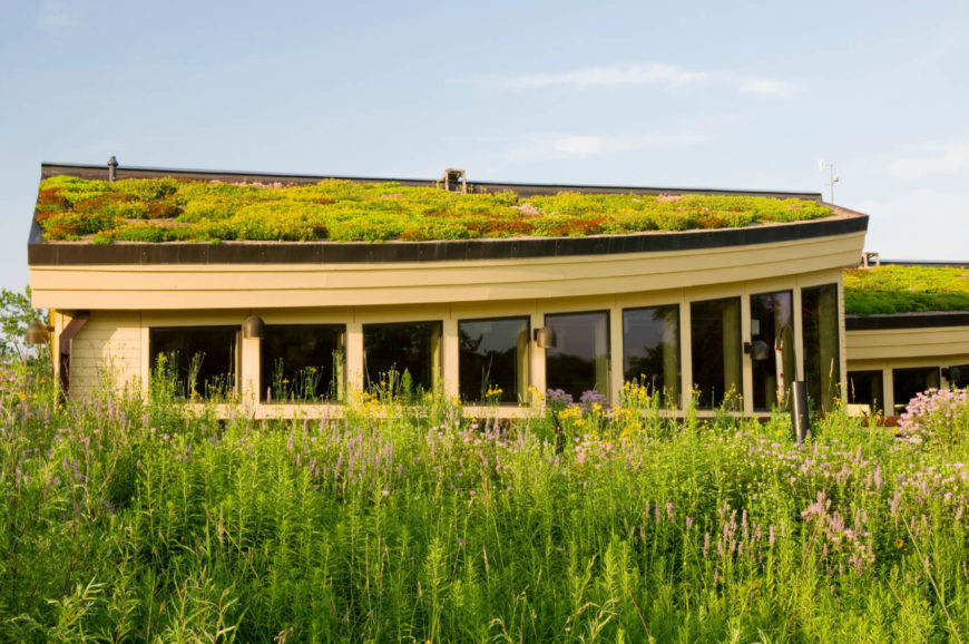 This is the Lebanon Hills Visitor Center building in Eagan, Minnesota, with rooftop vegetation mirroring its natural counterpart found throughout the surrounding landscape.