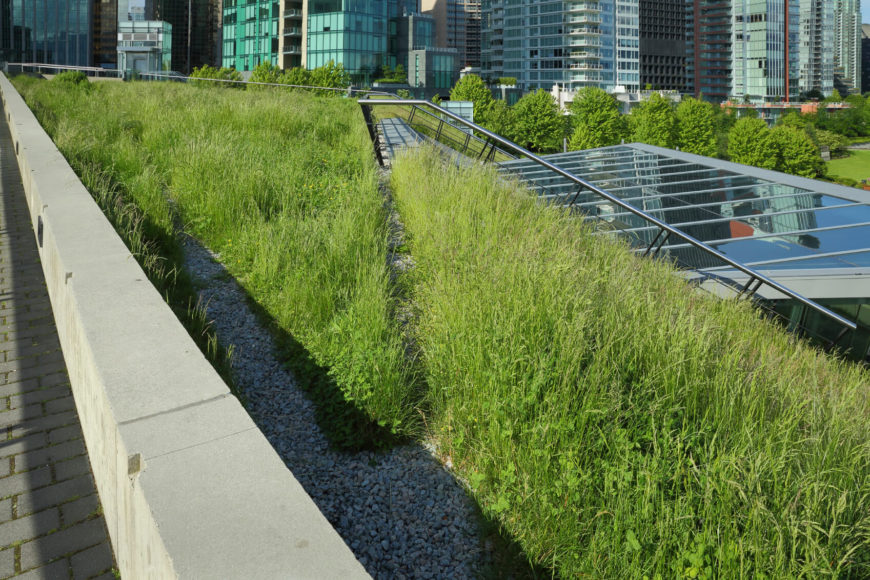 Here's another complex living roof on an office building, amplifying the energy conservation and sunlight absorption properties with a large set of skylights. A walking path turns this green space into a de facto nature park.