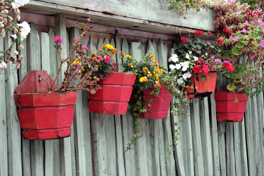 Expanding your garden vertically is as easy as finding flower pots of the same design, painting them a similar color, and then hanging in areas, such as the back fence, usually reserved for empty space.