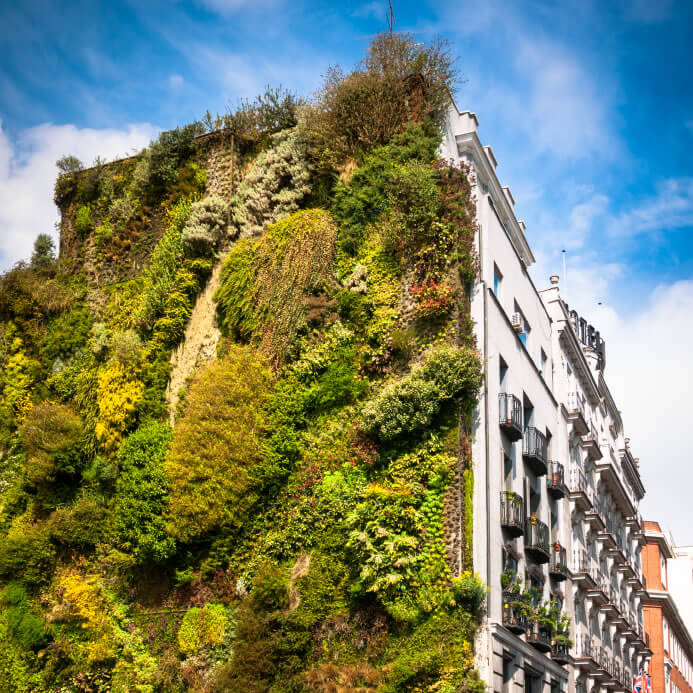 6-vertical-garden There is vertical...and then there is vertical! Buttress by a specially made surface, this amazing garden grows up the side of the British tenement. The contrast between ordered urban facades and the wild nature of the wall gardens is striking.