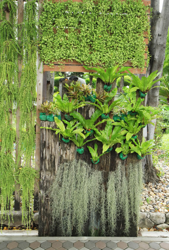 15-vertical-garden Mixing wood mediums helps turn a boring old stump into an exciting plant display. Using a variety of plant species will give viewers plenty of interesting colors and shapes at which to muse.