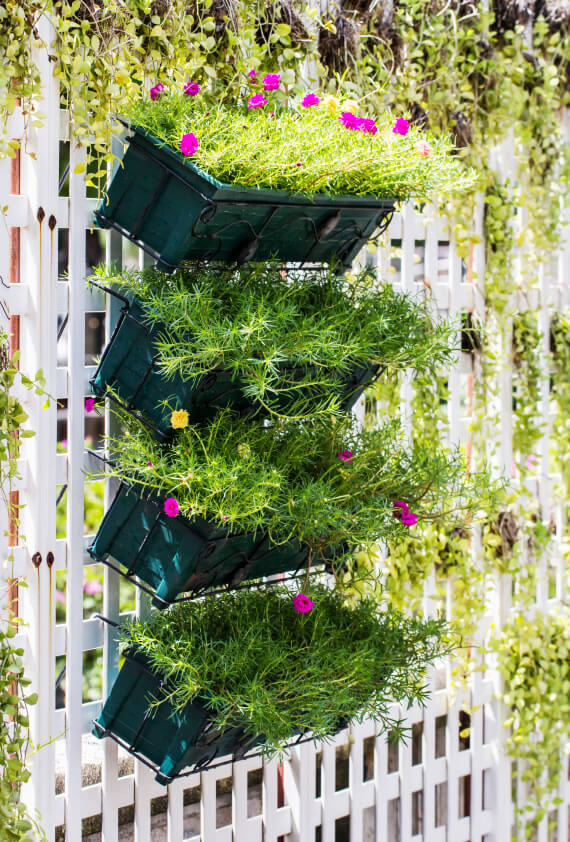 Tiered hanging plant racks is another great way to turned usually unused spaces, such as walls or fences, into usable growing space. As you can see, a lot can be packed into just a small open space.