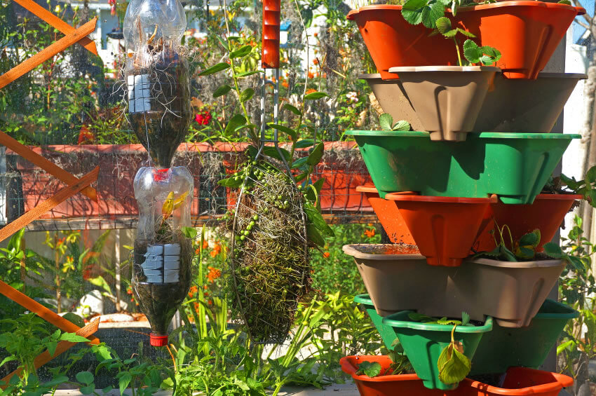 30-vertical-garden Going vertical means getting creative. Take an old 2-liter soda bottle, cut off the bottom and use it as a potter. With the right undergirding, eventually the rest of two-liter container can come off. Of course, if you're not feeling very creative, there are stackable flower pots.