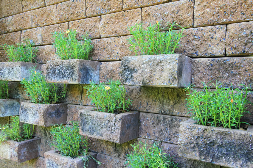 Vertical gardens are perfect space-savers. This garden used carefully spaced brick outcroppings to maximize space and deliver a visually pleasing pattern.
