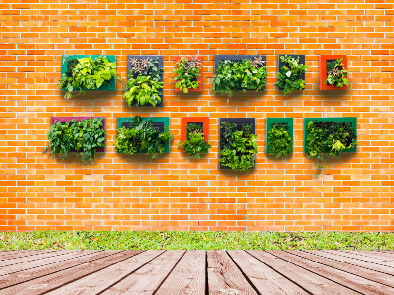 37-vertical-garden Even small garden wall installations can be effective. The one above uses frames from which to grow the plants, painting the frames a variety of colors to highlight each displ