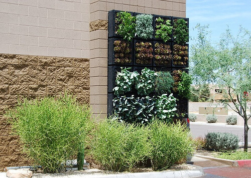 Vegetable gardens no longer are limited to your backyard. And they certainly are not limited to horizontal. This garden is located among a commercial developments, space usually serving just one purpose - parking. One big advantage of this method is that watering from the top tends to trickle the water down onto the plants below, thereby saving water.