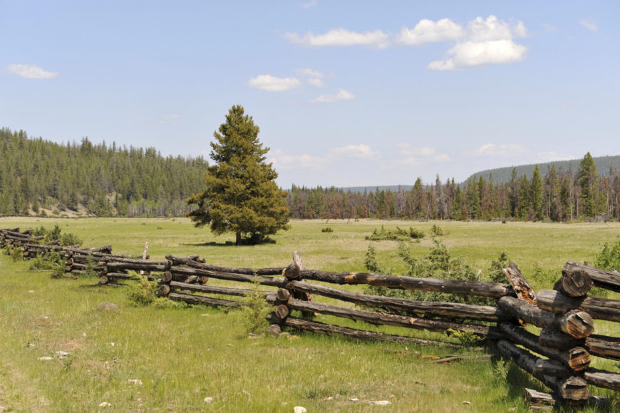 This traditional split rail fence is built to last, with thick logs used to form the structure. Here and there, diagonal supports are added for extra sturdiness. This type of fence is popular in areas where large, sturdy trees like pine are plentiful.