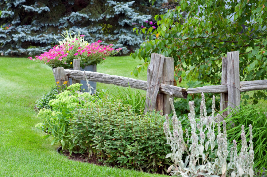 Another decorative fence that follows the curve of a lovely, colorful planting bed. At the tip of the fence is a large barrel planter filled with grasses and bold magenta blooms.