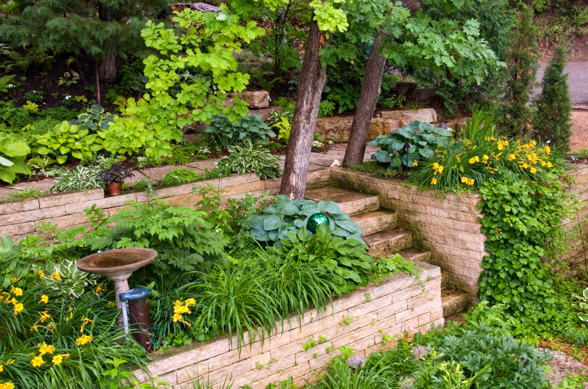 This garden has tall terraces that lead up the hill at the back of the property. Stairs built at the center help the homeowners get up to the higher terraces to water or fertilize.