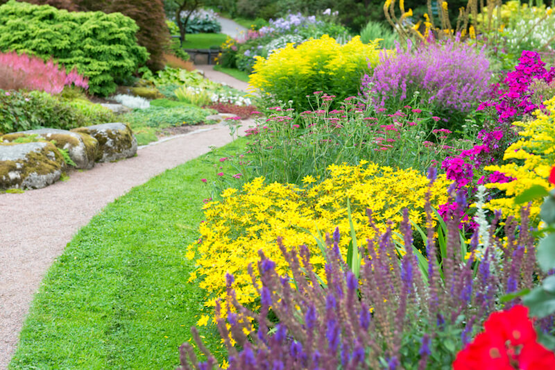 A simple gravel path winds through this thick garden and off into the distance. Vibrant color is center stage in this garden.