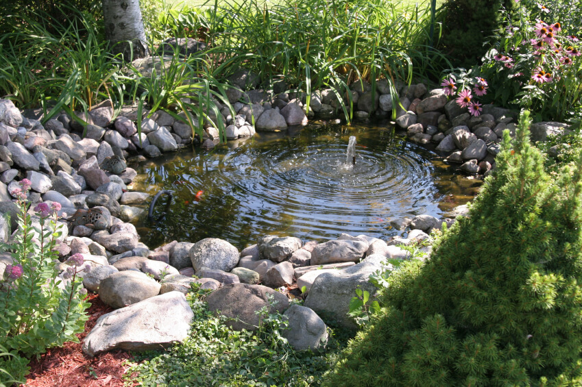 A small fish pond with a bubbler at the center, keeping the pond aerated and suitable for fish life.