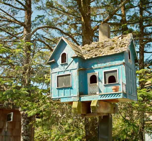 A light blue birdhouse designed to resemble a lovely English cottage.