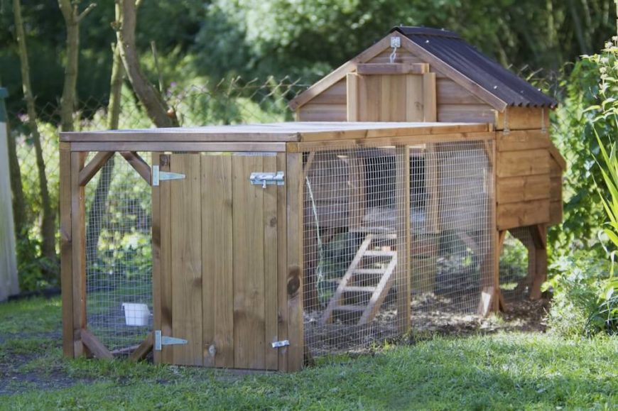 If you prefer to have an enclosure for your chickens, this might be a better option for your backyard. The wire enclosure keeps your hens corralled, and a cozy hen house at the back provides them with a nice spot to nest.