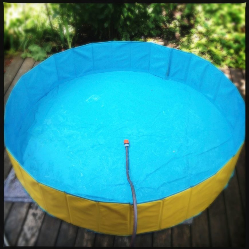Another example of a soft sided snapset pool. These pools fold up pretty nicely, so when not in use can be stored out of sight. This one has a simple yellow and blue design.