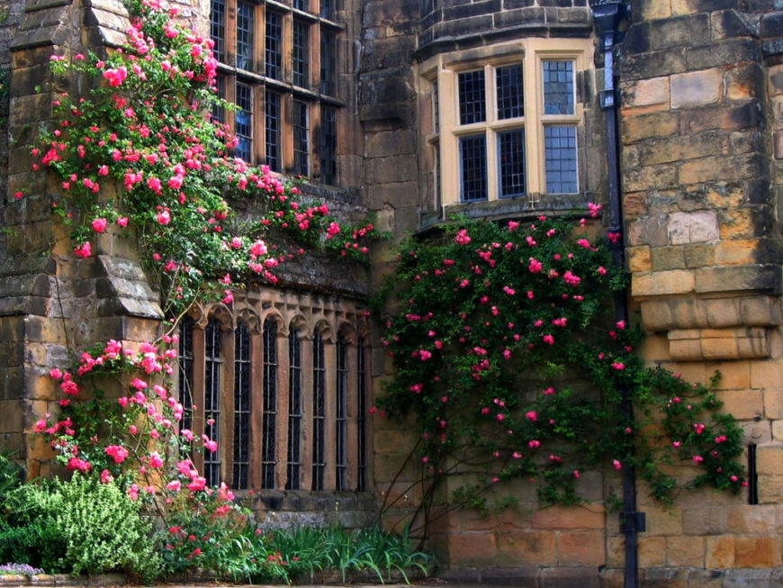 Roses have the power to transform any space. Deep pink roses turn this austere stonework exterior in to a sweetly romantic facade.